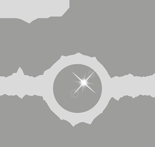 Paolo D'Intino Foto Logo